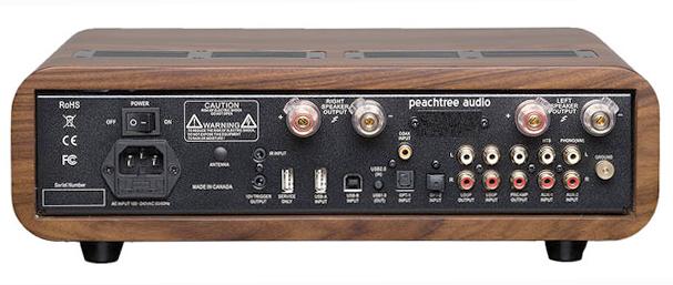 Peachtree Audio nova300 rear